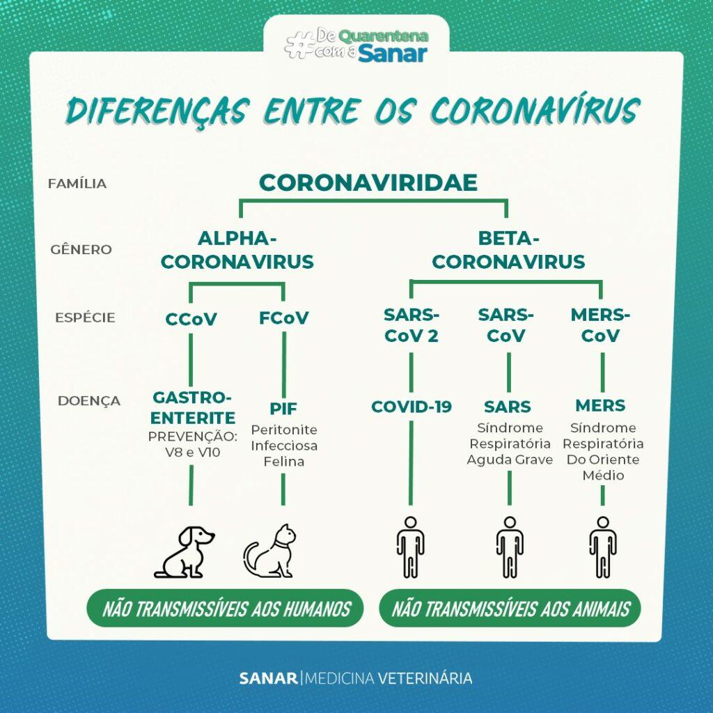 Diferença entre os Coronavírus