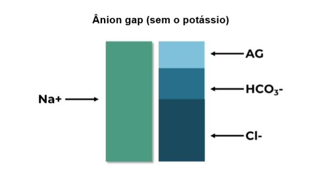 Ânion Gap sem potássio Interpretação de gasometria arterial e identificação de distúrbios ácido-base