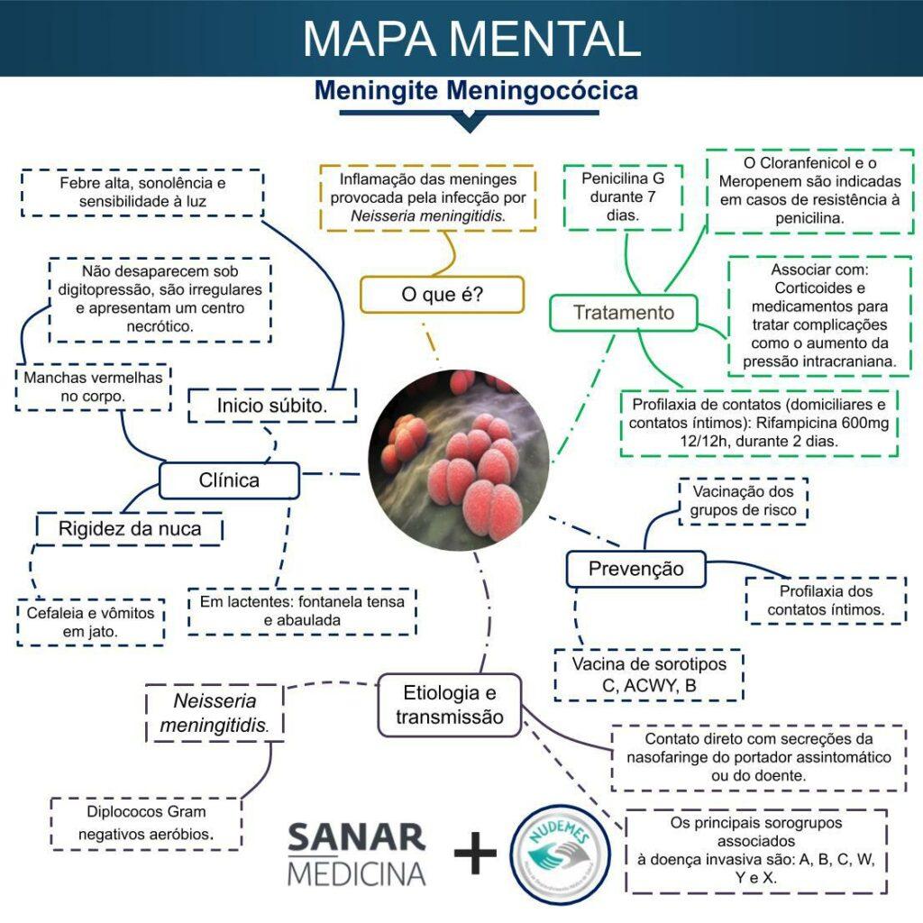 Mapa mental de meningite meningocócica - Sanar